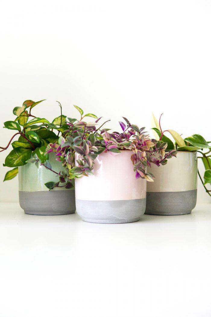 cache pot en céramique couleur pastel