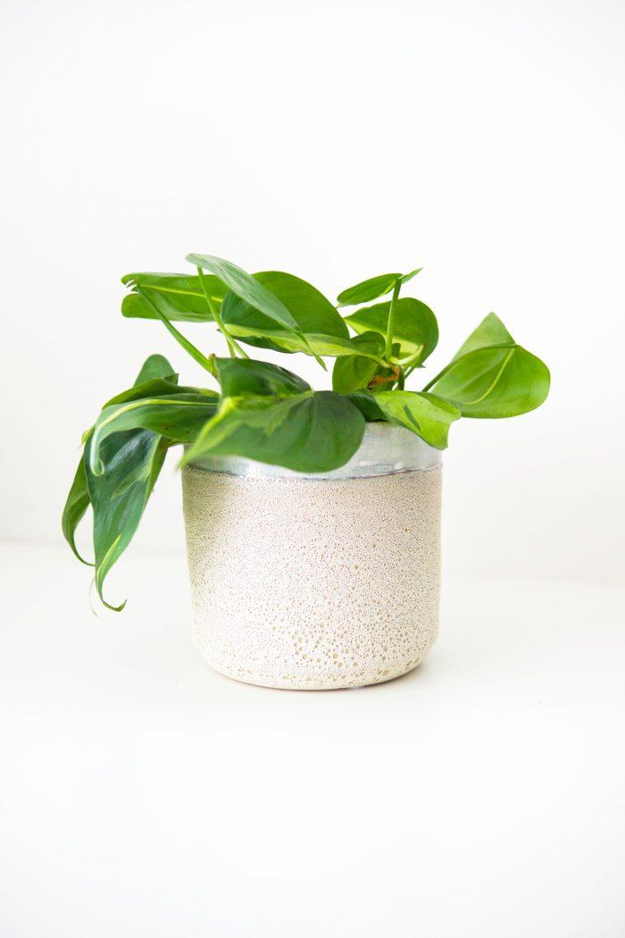 cache-pot pour plantes d'intérieur texturé effet corail avec liseré bleu clair et rebords dentelés