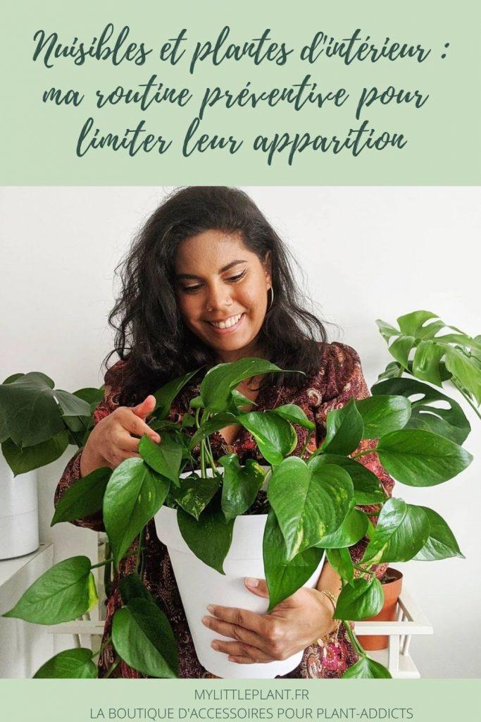 comment réussir à se débarasser des nuisibles sur les plantes d'intérieur ?