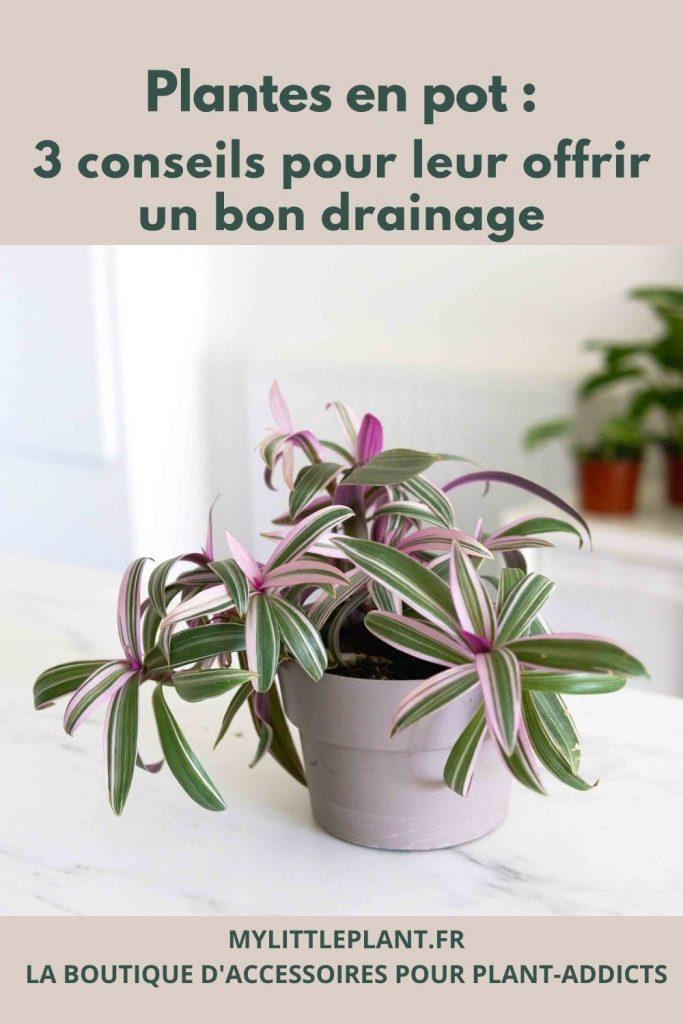 plantes en pot : comment leur offrir un bon système de drainage ?